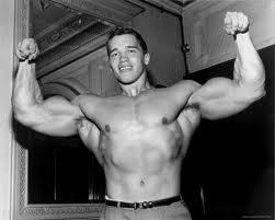 Schwarzenegger Trainingsplan